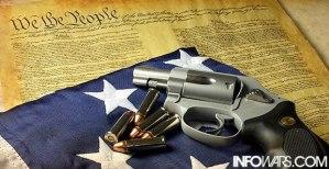 constitution-gun2