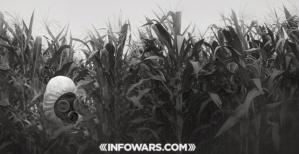 GMOfield