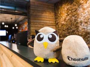 hootsuites-owl-mascots-are-shown-in-the-companys-cabin-theme