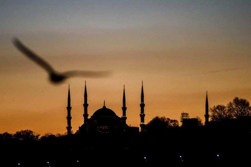 Turkey-unrest-IS-128_m