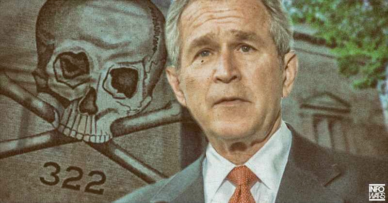 skull-bush3