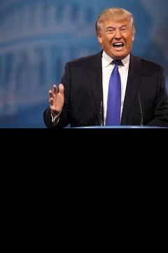Trump 8